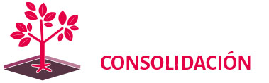 icon CONSOL