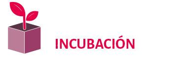icon INCUBA